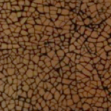 MO02 Light Brown Eggshell Mosaic